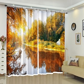Mangrove Reflection In The River 3D Scenery Curtain