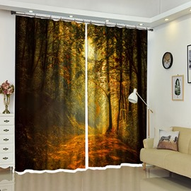 Winding Path in Deep Forest Trees View Polyester Curtain / Blackout