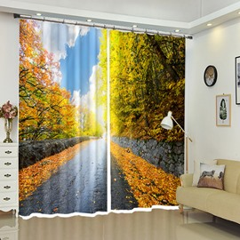 Autumn Sky Above Stone Leaf-road Scenery 3D Curtain 2 Pieces