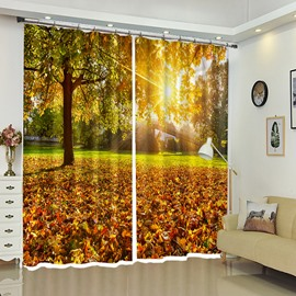 Maple Leaf Carpet Under Sunshine 3D Scenery Window Blackout