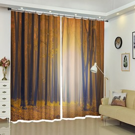Forest Dim Light Tall Tress Scenery Curtain 2 Pieces Blackout