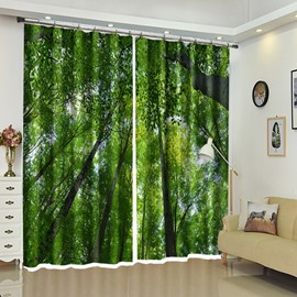 Green Leaves of Treetop Natural View 3D Curtain Blackout