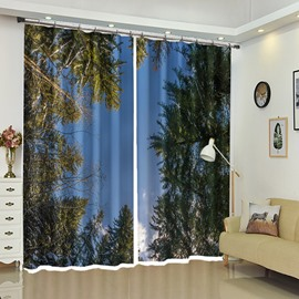 Treetop of Pine Tree Scene 3D Curtain for Bathroom