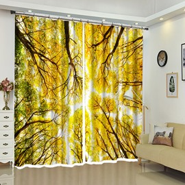 Yellow Leaves of Treetops Natural View Curtain Decorative Blackout
