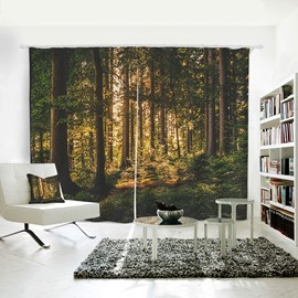 Sunshine and Morning Woods Pattern 3D Polyester Curtain