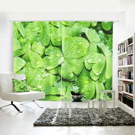 3D Warterproof Shamrock Plant Pattern Digital Printing Curtains