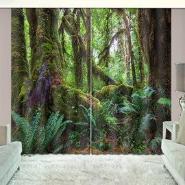 3D Blackout Dreamy Woods Natural Drapes Print Curtain