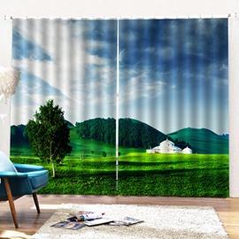 Beddinginn Sky Decoration Curtain Pastoral Curtains/Window Screens
