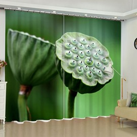3D Vivid Lotus Seed Printed 2 Panels Living Room and Bedroom Blackout Curtain