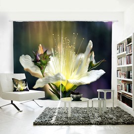 3D Blackout Spring Nature Floral Landscape Pattern Digital Printing Curtain