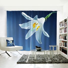 3D Anti Bacterial Waterproof Polyester Floral Pattern Printing Curtain