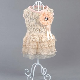 Amazing Pretty Sweet Lace Pink Dress Dog Clothing