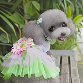 New Arrival Amazing Beautiful Pet Green Princess Dress