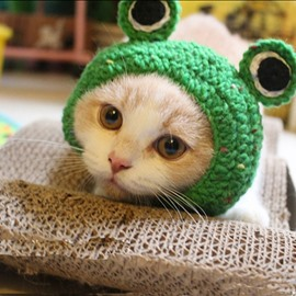 Frog Shape Design Cute Pet Green Hats for Small Cats