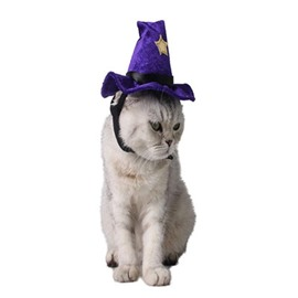 Halloween Costume Cat Witch Purple Fleece Hat