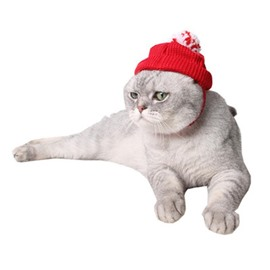 Teddy Puppy Dog Cat Christmas Costume Cute Red Hat