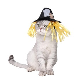 Halloween Festival Costume Scarecrow Cat Dog Hat