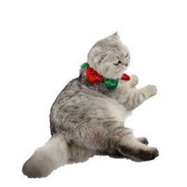 Cat Christmas Collar Neck Warm Puppy Dog Santa