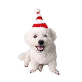 Cat Christmas Hat Puppy Dog Santa Hat Red