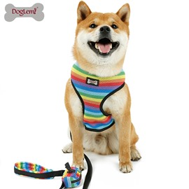 Rainbow Breathable Irisated Dog Leash Chest Strap