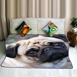 Pug Dog Pitiful Face Pattern Flannel Super Soft Bed Blankets