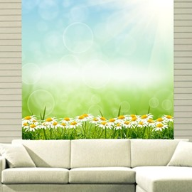 Dreamy Daisy Field Printing 3D Roller Shades