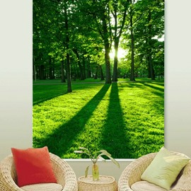 The Tree in the Morning Printing 3D Roller Shades