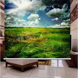 3D Printed Blue Sky and Green Grass Grassland Style Roller Shades