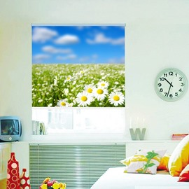 Sunshine Daisy Field Printing 3D Roller Shades