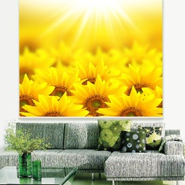 Gorgeous Golden Sunflower Field Printing 3D Roller Shades