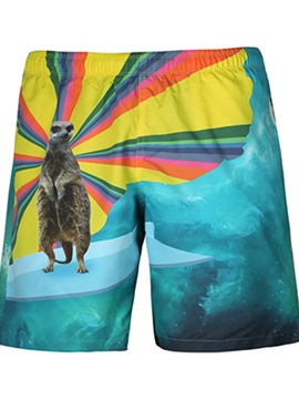 Special Animal Pattern 3D Painted Beach Shorts