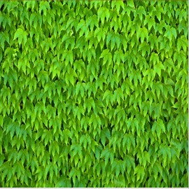 Bright Green Leaves Pattern Healthy Design Splicing Waterproof 3D Floor Murals