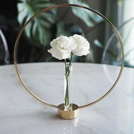 Creative Hydroponics Test Tube Wrought Iron Vase