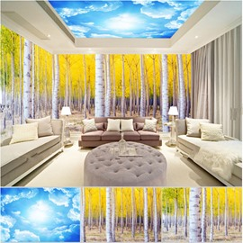Natural Birch Forest and Blue Sky Combined Waterproof 3D Ceiling and Wall Murals