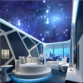The Milky Way Pattern Waterproof Durable and Eco-friendly 3D Ceiling Murals