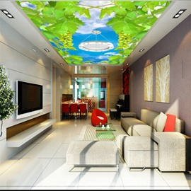 3D Green Grapes in Blue Sky Waterproof Durable and Eco-friendly Ceiling Murals