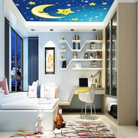 3D Moon Stars Blue Sky PVC Waterproof Sturdy Eco-friendly Self-Adhesive Ceiling Murals
