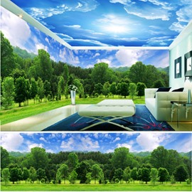Blue Sky and Green Woods Pattern 3D Waterproof Ceiling and Wall Murals