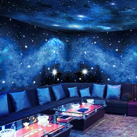 Starry Sky Non-woven Fabrics Waterproof Environment Friendly 3D Wall Murals/Wallpaper