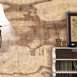 3D Wooden Texture Printed Sturdy Waterproof and Eco-friendly Wall Mural