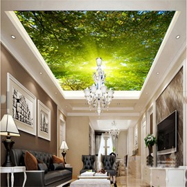 3D Green Forest in Sunshine PVC Waterproof Sturdy Eco-friendly Self-Adhesive Ceiling Murals