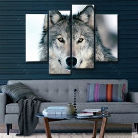 Lifelike Simple Style Wolf Pattern 4 Pieces Framed Wall Art Prints