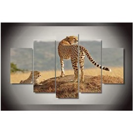 Lying and Standing Leopards 5-Piece Canvas Non-framed Wall Prints