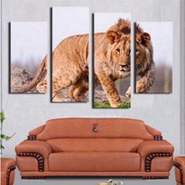 Brown Lion Walking on Ground Hanging 4-Piece Canvas Eco-friendly and Waterproof Non-framed Prints