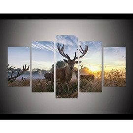 Deer in Sunrise Hanging 5-Piece Canvas Eco-friendly and Waterproof Non-framed Prints