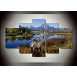 Deer beside Tranquil Lake Hanging 5-Piece Canvas Eco-friendly and Waterproof Non-framed Prints