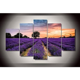 Purple Lavender Field Hanging 5-Piece Canvas Eco-friendly and Waterproof Non-framed Prints